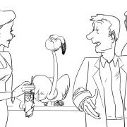 Making of  Bar flamamants Voeux animateurs